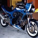 sabot bandit 95/99